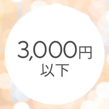 ALL3000円以下!こちらも合わせてチェック